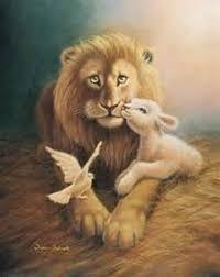 the 25 best lion and lamb ideas on pinterest lion of judah