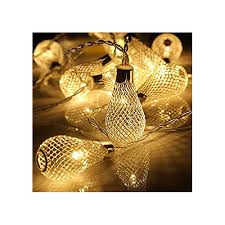 2m 20 mesh light bulb lights warm white lights company