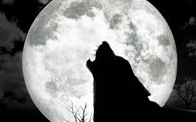 halloween wolf background image from http www yee7 com wallpaper full full moon wolf