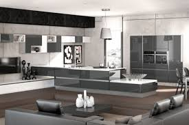 salon et cuisine ouverte decoration interieur salon cuisine ouverte