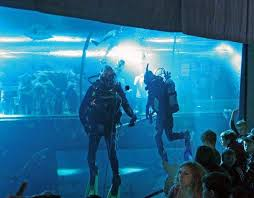Seeking Oregon Coast 7 Best Oregon Coast Aquarium In The News Images On