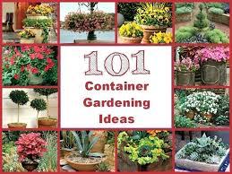 Gardening Ideas Pinterest Pot Garden Ideas Container Gardening Ideas Garden Pot Ideas
