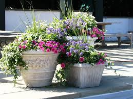how to make flower arrangements in patio container my garden