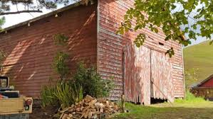 Barn Houses For Sale Nz Bethells Beach Property Which Hosted The Power Rangers And Xena Up