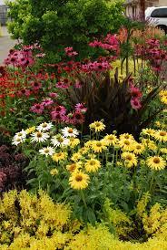 1539 best garden images on pinterest flower gardening plants