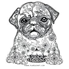 printable coloring pages u2013 corresponsables co