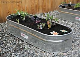 4788 best gardening tips images on pinterest gardening tips