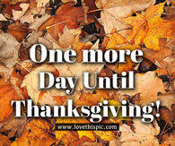 thanksgiving countdown pictures photos images and pics for