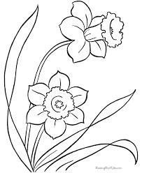 free printable spring color kids daffodils