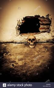 human skull on breaking concrete wall in abandoned house horror