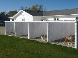 Dog Daycare Floor Plans by 27 Best Images About Dog Kennel Somedays On Pinterest The
