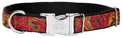 paisley ribbon buy premium paisley ribbon dog collar online
