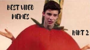 Best Video Memes - shawn mendes best video memes part 2 youtube