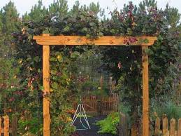 wedding arbor kits simple wedding arbor plans diy pergola