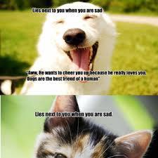 Dog Lover Meme - dog lovers shouldn t be so hypocritical by slptdg meme center