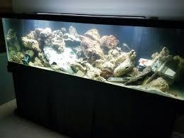 125gl wars aquarium did you that now you