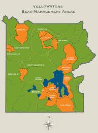 Bear Creek Trail Map Yellowstone Bear Management Areas