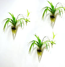 Wall Mounted Glass Flower Vases Clear Glass Flower Pots Uk Winsome Mercury Glass Orchid Pot White