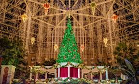 celebrating thanksgiving at gaylord palms resort palm resort and