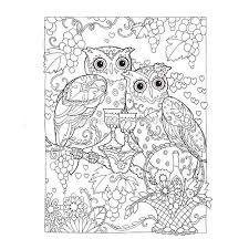 creative haven coloring book owls coloring book books for