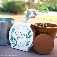 Flower Pot Wedding Favors - new planting kit wedding favors blog botanical paperworks