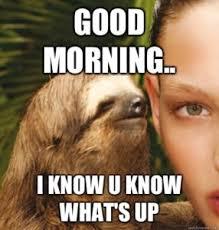 Good Morning Meme - funny good morning memes quotes cute morning memes images pics