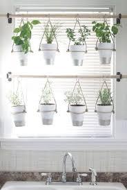 designer neumã nster 47 best garden ideas images on gardening plants and