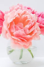 The Pink Peonies by Littlebigbell Pink Peonies Archives