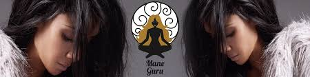 Expensive Hair Extensions by Expensive Mane Guru