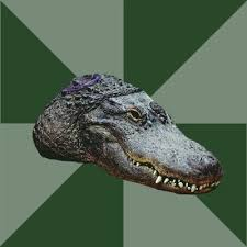 Crocodile Meme - create meme crocodile alligator crocodile pictures meme