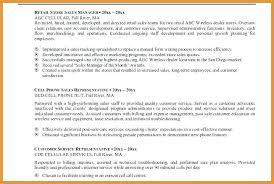 sle resume for customer service executive skills assessment executive summary exle for resume