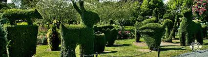Botanical Gardens Images by Green Animals Topiary Garden Newport Mansions