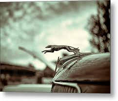 1934 ford greyhound ornament metal prints and 1934 ford