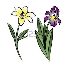 set of two outlined flowers tulip and daisy in sketch hand drawn