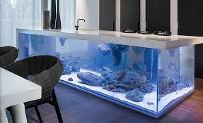amazing kitchen islands kitchens aquarium kitchen island brings in the wow factor 10