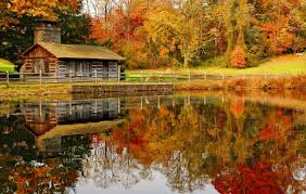 lakes fall lake serenity clear forest pond calm quiet autumn