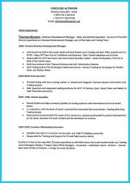 Business Analyst Resume Template Word Professional Borders For Resume Best Dissertation Chapter