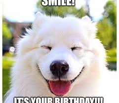 Birthday Animal Meme - its my birthday memes all time best funny happy birthday memes
