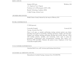 Sample Resume 85 Free Sample by 100 Resume Chronological Order Resume Chronological Order