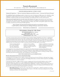 it consultant resume soft consultant resume it exle magnificent partypix me