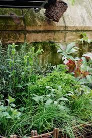 36 best get the look mediterranean garden images on pinterest