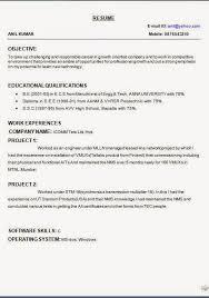 Curriculum Vitae Sample Career Objective