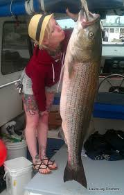 massachusetts striper fishing cape cod fishing charters
