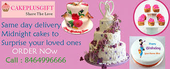 Same Day Delivery Gifts Admin Author At Cakeplusgift