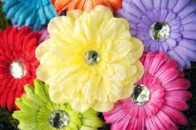 Flower Clips For Hair - amazon com ema jane spring bling gerber daisy flower hair clips