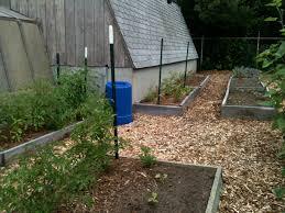 Botanical Garden Chapel Hill by Gardens We Love Growing Safer Gardens