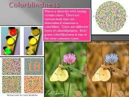 Most Common Type Of Color Blindness Chapter 15 U2013 Chromosomal Basis Of Inheritance Ppt Online