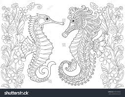 coloring page seahorse freehand sketch drawing stock vector