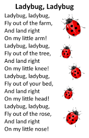242 best lady bugs images on pinterest lady bugs ladybug and