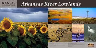 salina ks sunflower field by kansas state university arkansas river lowlands student housing